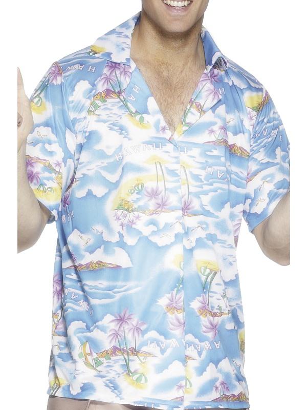 d7042266dca4 Hawaiian Luau Fancy Dress : Fancy Dress Coz